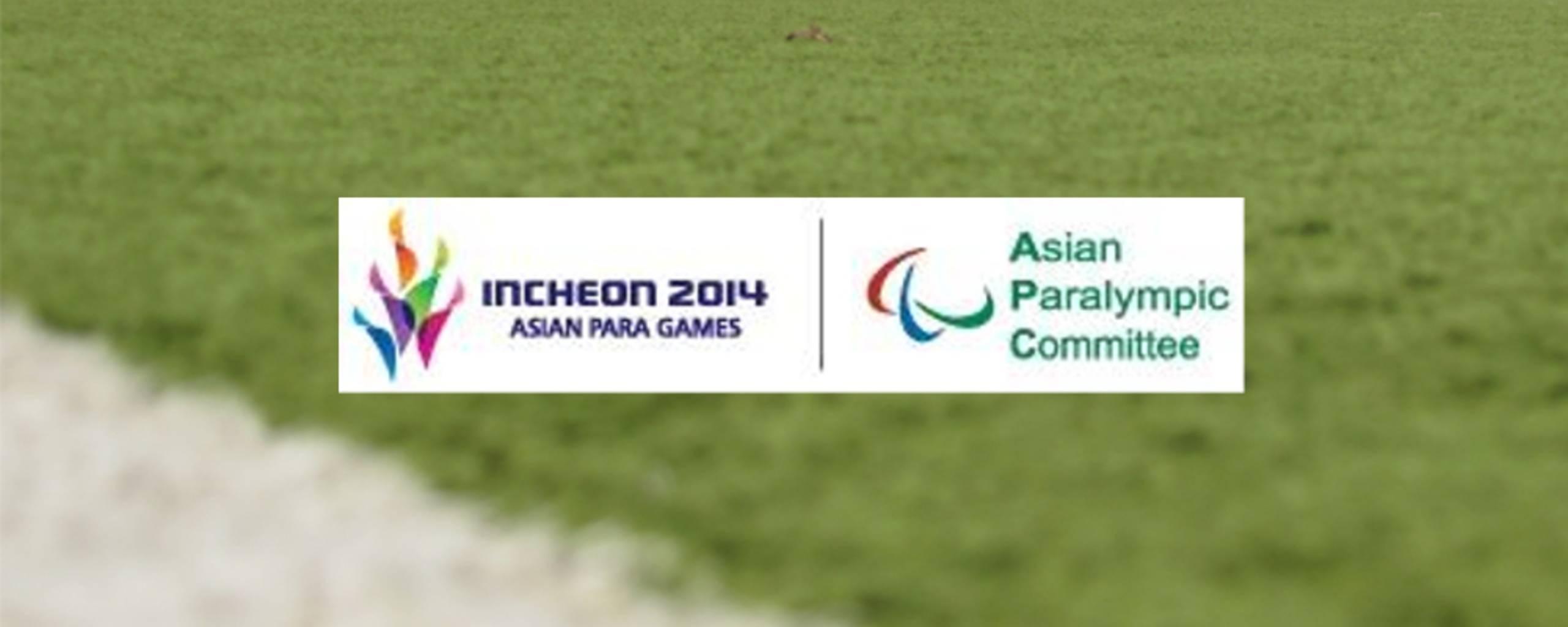 APG-Logo auf Fußballplatzhintergrund (Logo-Quelle: IBSA)